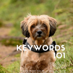 Shaggy teeny dog with text overlay