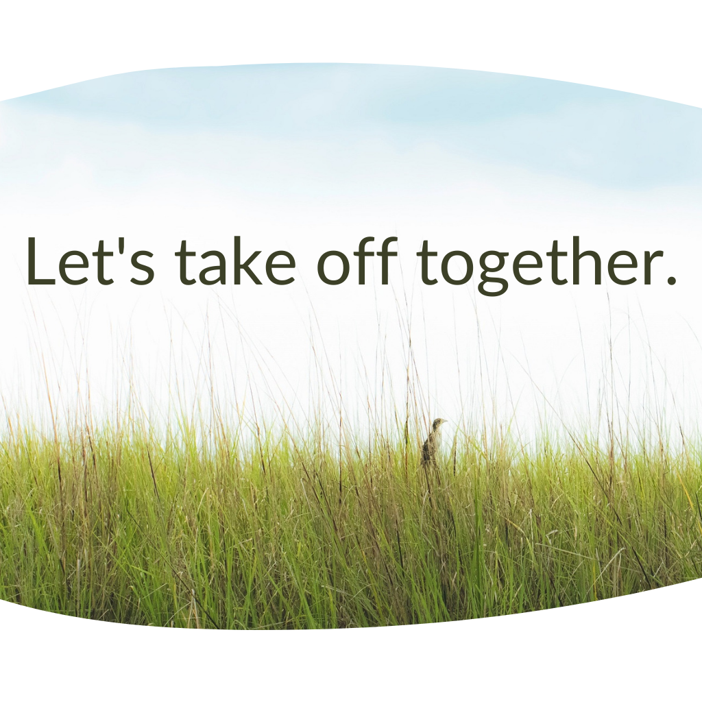 """tall bird in tall grass. text: """"let's take off together."""""""
